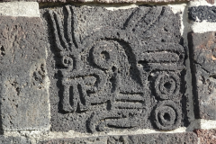 Mexico-City-2016-13-of-154