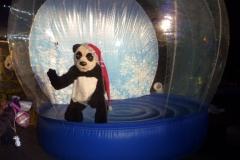 Jason-the-Panda-13-1024x805
